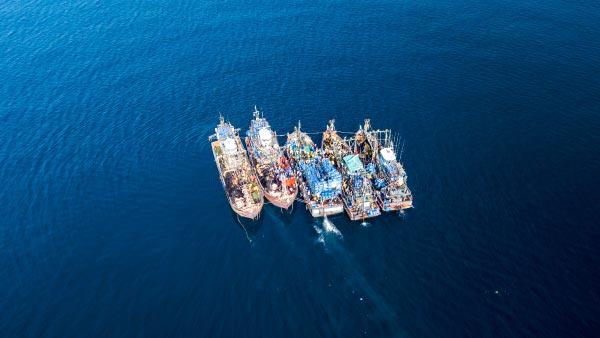 Lucha contra la pesca ilegal, no declarada y no reglamentada (INDNR)